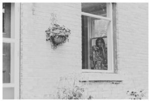 wedding-photography-grey-county
